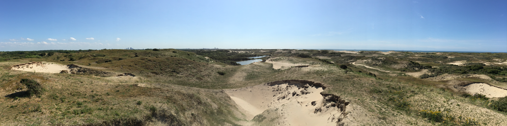 A View on The Meijendel dunes